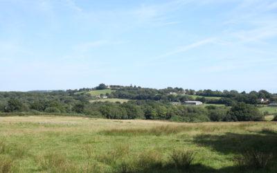Landscape Visual LVIA consultants case study High Weald AONB